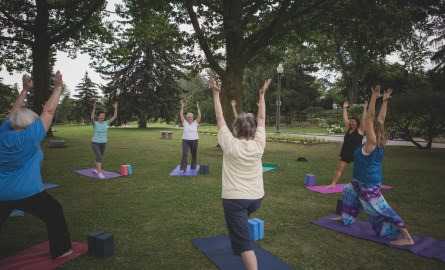 Group of people doing yoga in the park